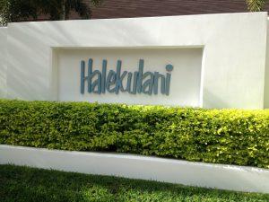 Halekulani Hotel Car Service