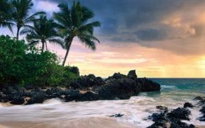 Oahu Circle Island Tour Service
