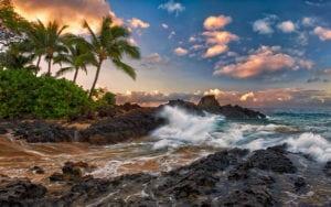 Oahu Mini Circle Island Tour